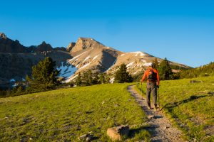 Wheeler Peak hiking