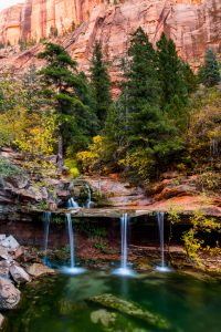 Double Falls. Right Fork of North Creek. Zion National Park.